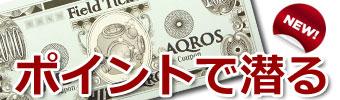 スキューバダイビング AQROS フィールドチケット